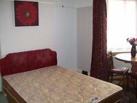 Large Double Room for a Professional!