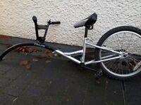 Kids trailer bike