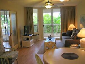 Maui Condo - Kihei Hawaii.  Just steps from the beach !!