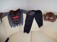 Halloween Costumes 5 asstd