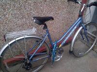 """Female mountain bike 27"""" wheels Nearly new"""