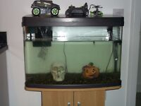 Tropical fish aquarium for sale