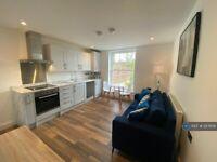 1 bedroom flat in Thorpe Road, Norwich, NR1 (1 bed) (#1217638)