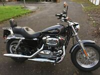 Harley Davidson Sportster 1200 custom 2014 in Beautiful Condition Low Mileage