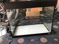 Fluval fish tank and filter