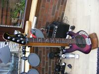 5 STRING MUSICMAN BASS GUITAR