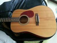 Cort Acoustic - Solid Top