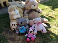 SELECTION OF SOFT TOYS FOR SALE. BUNNY RABBIT. FOREVER FRIENDS BEAR. BEDROOM. NURSERY. COLLECTABLE