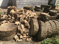 Seasoned ash logs