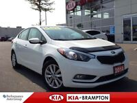 2014 Kia Forte LX PLUS NOT A DAILY RENTAL CLEAN CARPROOF!!