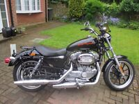 Harley Davidson Superlow XL 883L Sportster – black, single seater