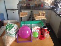 Pet cadge for rat gerbil hamster etc