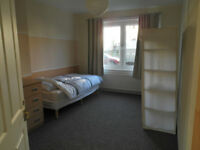 One room in shared flat to rent