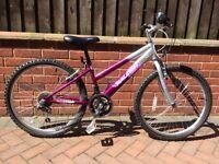 Child's Raleigh Bike