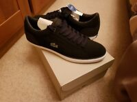 Lacoste trainers brand new black size 11