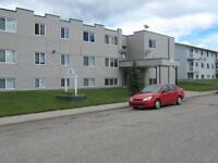 Modern 1 or 2 BDRM Apartments (Furnished & Non) Grande Cache
