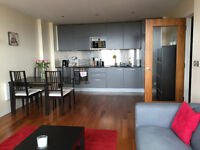 Cardiff City Centre, Admiral House apartment, furnished 2 bedroom flat, amazing views to Cardiff bay