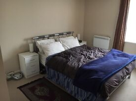 Double room available in Stephney Green