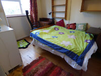 Double room in beautiful house with stripped pine floors in Didcot