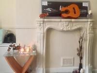 Mini Acoustic guitar 🎸