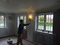 POLISH PAINTERS - PROFESSIONAL - EXPERIENCED - RELIABLE