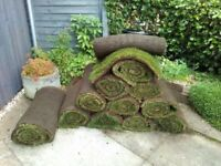12 rolls off turf standard size left over from yesterday