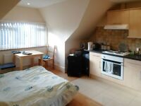 Charming good size studio in a popular residential area of Acton **DSS Available**