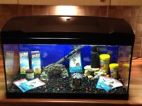 great starter aquarium. everything needed to start ! £75.00