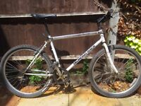 Vintage 1992 Diamond Back Topanga Mountain Bike