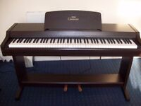 Yamaha Clavinova CLP-810s Digital full size Piano with 88 fully weighted keys and 2 pedals