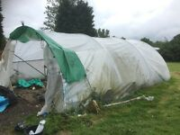 Poly tunnel / greenhouse