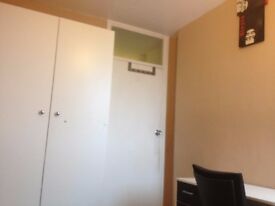 Nice single room to let