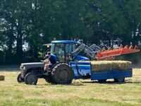 Hay for sale small bales freshly baled May 2020