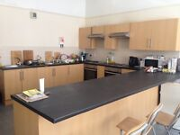 One double room in 7 bedroom female student flatshare!
