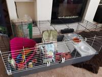 Starter kit for rabbit/guinea pigs/small animals