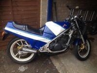 Suzuki rg 250