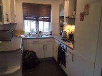 single Room / Colchester town centre/ £300.00 per month