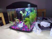 Fish tank set