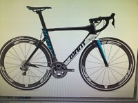 New editon giant road bike with extra pedals water bottles and extras