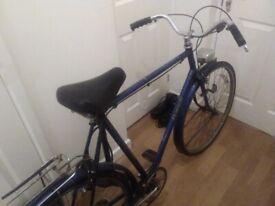 Bike Raleigh . Classic