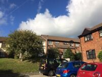 Garden Flat available to rent beginning of October