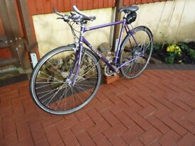 """Nelson road bike steel 21"""" frame 18 speed with mudguards."""