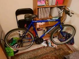 Apollo Jeapardy Hybrid Mountain Bike