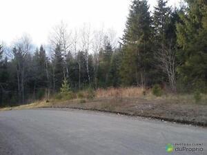 55 000$ - Terrain résidentiel à vendre à St-Faustin-Lac-Carr