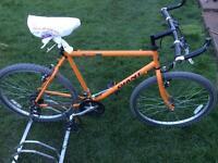 Men's giant bike