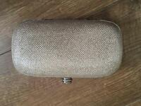 Kurt Geiger clutch bag New with tags