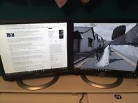 "2 x DELL 19"" Monitors"