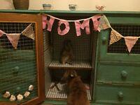 Bespoke tiled, indoor Rabbit Hutch/House