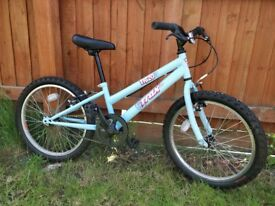 "Kids 20"" mountain bike: Trax 20"