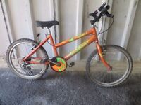 "Orange Mountain Bike – 20"" Wheels"